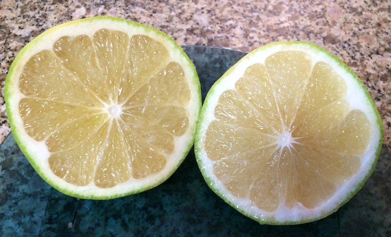 Pumelo cut in half to see fruit inside