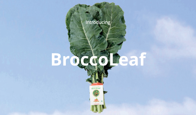 Broccoli Leaves - The Super Green