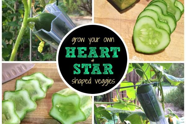 Vegetable shape molds