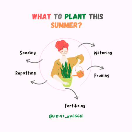 What to plant in June +Tips